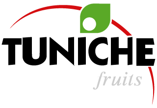 Tuniche Fruits Chile