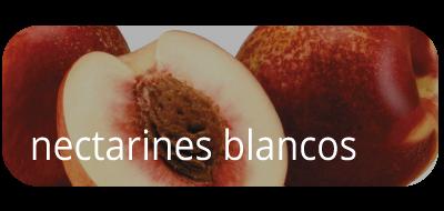 Nectarines Blancos