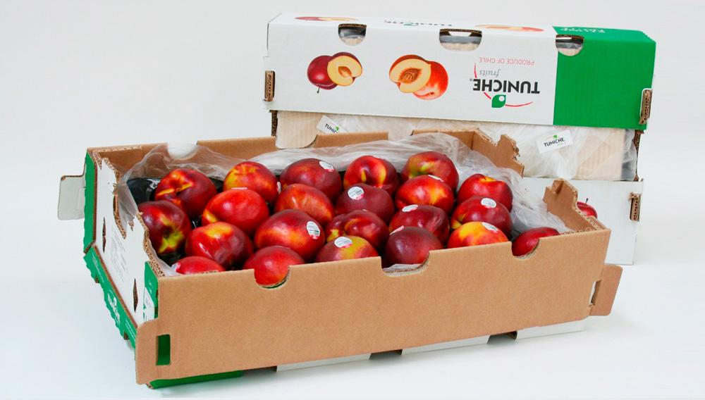 Embalaje Frutas de Exportación