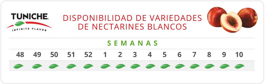 Nectarines Blancos Disponibilidad