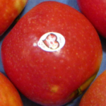 tunichefruits-manzanas-pink-lady-3