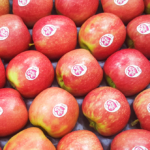 tunichefruits-manzanas-pink-lady-5